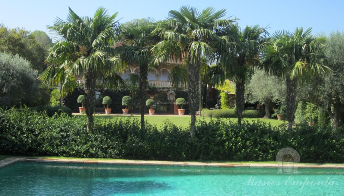 Imagen de la fantástica piscina de la propiedad con las palmeras en segundo término dando privacidad a esta zona del jardín