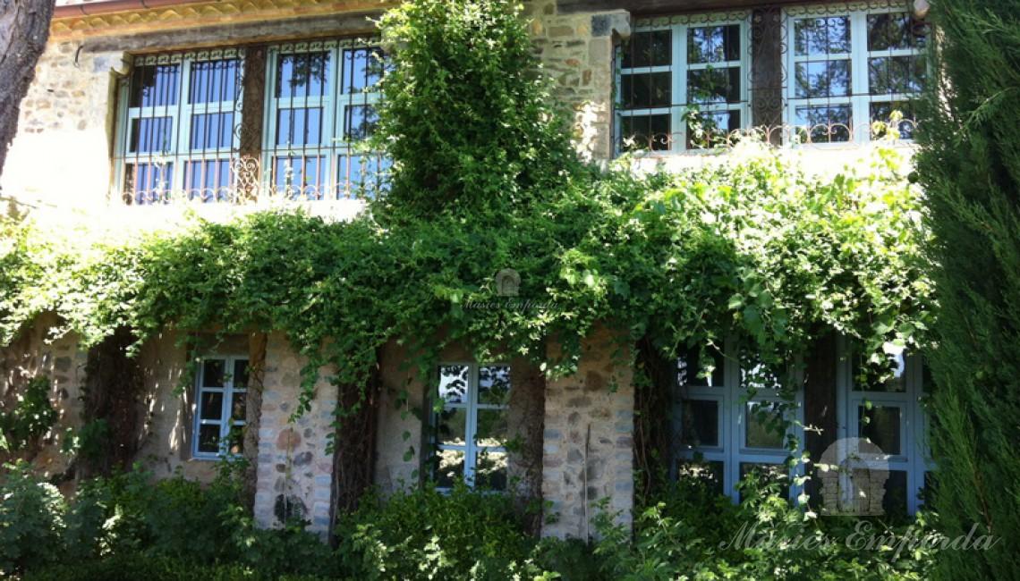 Detalle del lateral de la casa donde se ubican los salones de la planta baja y según planta con los grandes ventanales y la enredadera verdes dando un toque de color a la piedra.