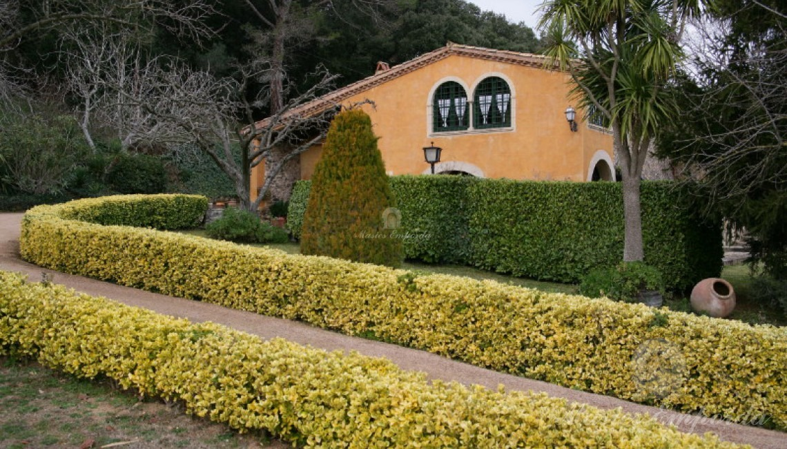 Vista de la casa des de l'entrada
