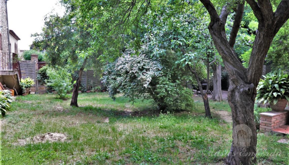 Vistes del jardí