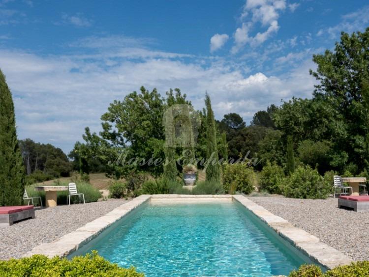 Vistes de la piscina i el jardí