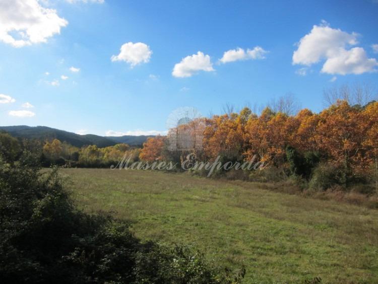 Vista de los campos y bosques de la propiedad