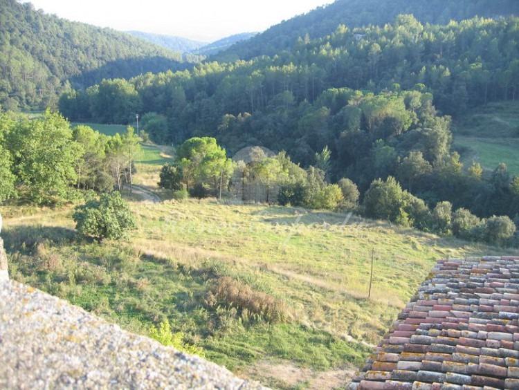 Vistas de los campos y bosques de la propiedad desde la torre del castillo