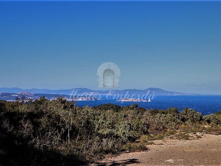 Vistes del mar i de les illes Medes des de les parcel·les