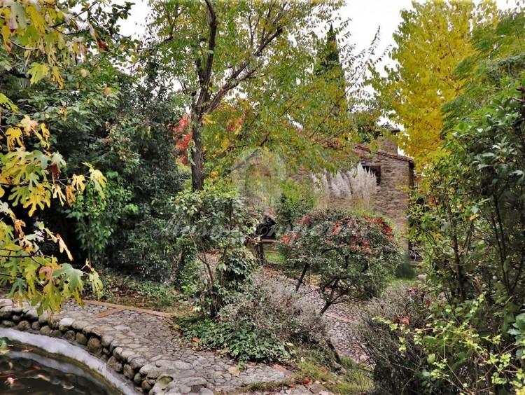 Vista de part de jardí i la casa a fons de la imatge