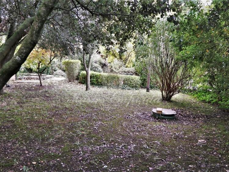 Vista de part de jardí