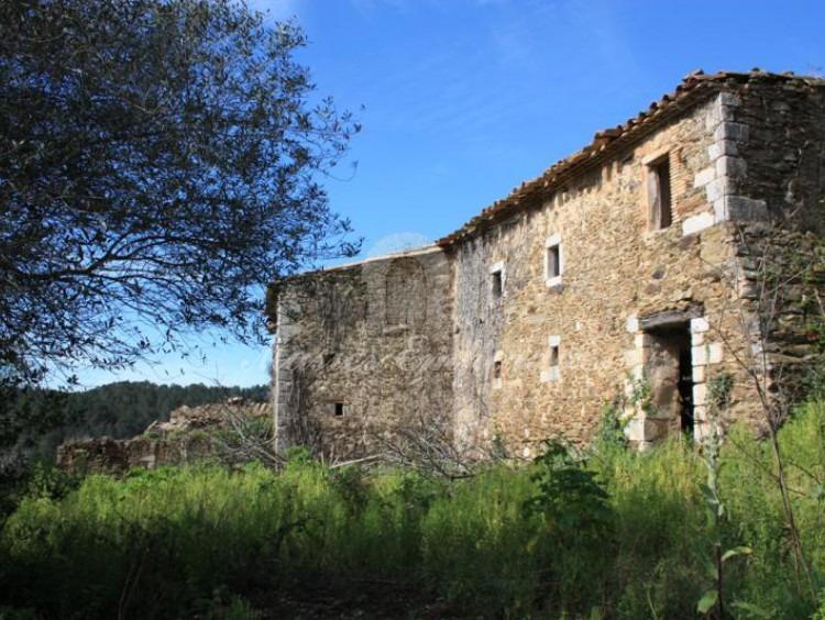 Detall de la part posterior de la masia